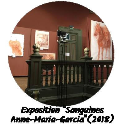 Exposition sanguines par anne maria garcia 2018 1