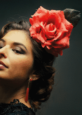 Rtemagicc expo flamenco 2019 png